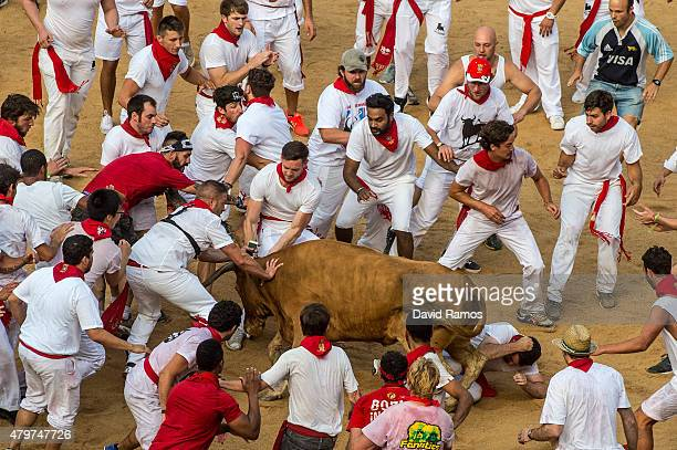 Revellers attempt to avoid a fighting calf inside Pamplona bullring during the second day of the San Fermin Running of the Bulls festival on July 7...