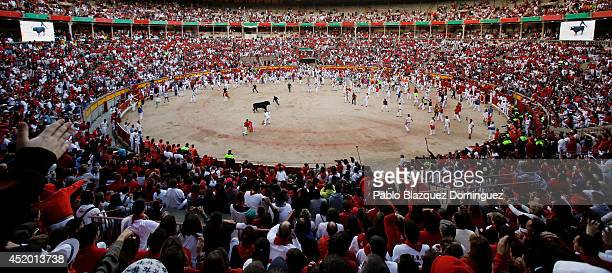 Revellers run with the last Jandilla's fighting bull inside the bullring while bullfighters try to take it to the bullpen during the sixth day of the...