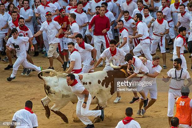 Revellers try to avoid a fighting calf inside Pamplona bullring during the second day of the San Fermin Running of the Bulls festival on July 7 2015...