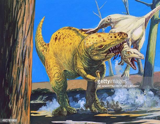 T rex Tyrannosauridae attacking an Ornitholestes hermanni Ornitholestidae Late Cretaceous Illustration