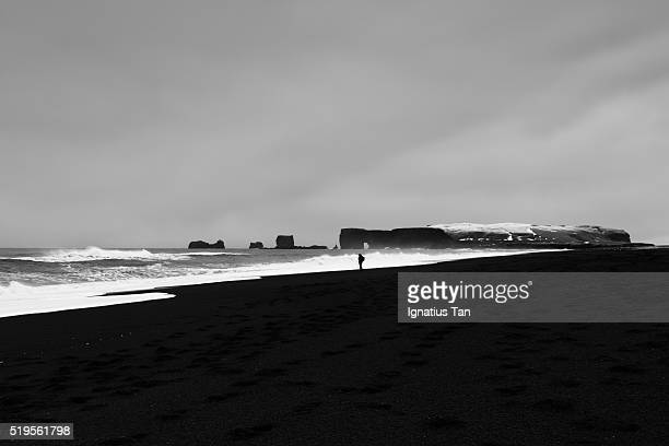 reynisfjara beach and dyrholaey with photographer - ignatius tan stock photos and pictures