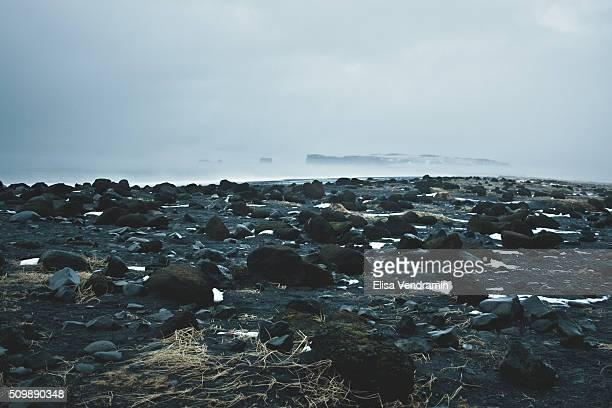 Reynisfjara is a black shore west of Vik in the South of Iceland