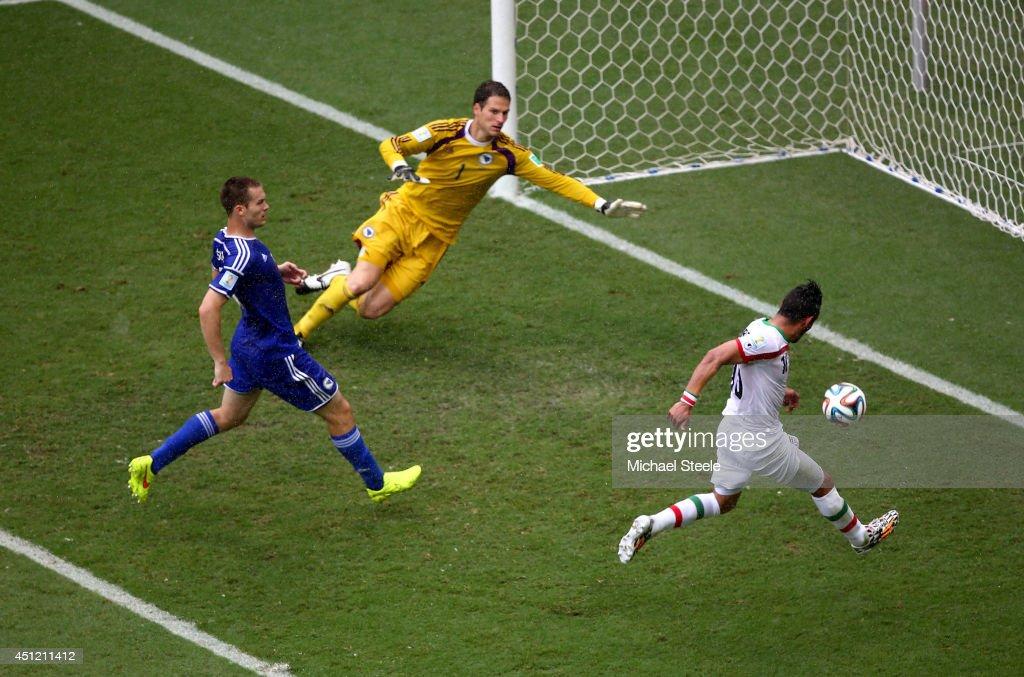 Bosnia-Herzegovina v Iran: Group F - 2014 FIFA World Cup Brazil : ニュース写真