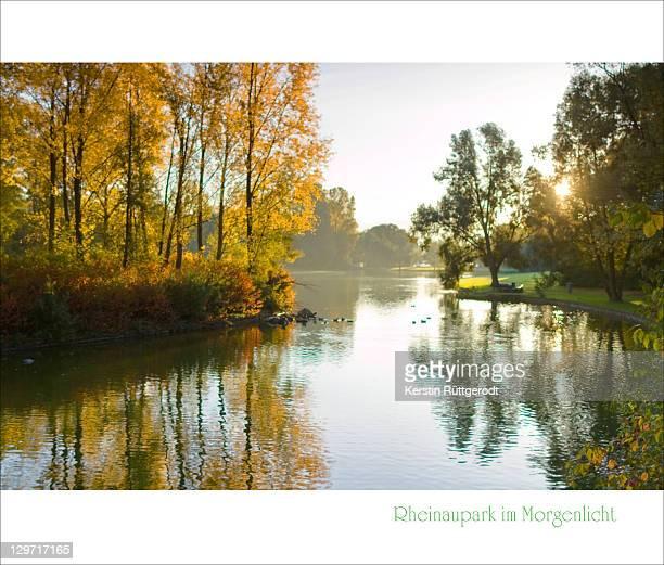 Rheinaupark im Morgenlicht