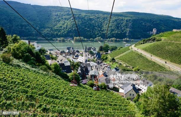 Rheingau Winegrowing Region, Hessen, Germany