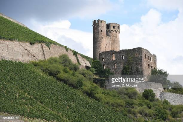Rheinstein Castle in Rüdesheim am Rhein resting on the edge of Rüdesheimer Berg Vineyard hillside in Rüdesheim am Rhein Germany in July 22nd 2017