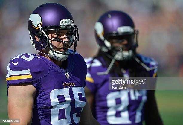 Rhett Ellison of the Minnesota Vikings eyes the stands during warmups prior to an NFL game against the New England Patriots at TCF Bank Stadium, on...