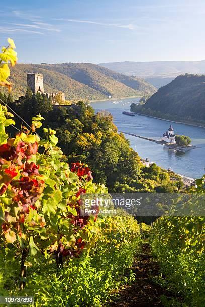 Rhine & Gutenfels Castle, Rhine Valley, Germany