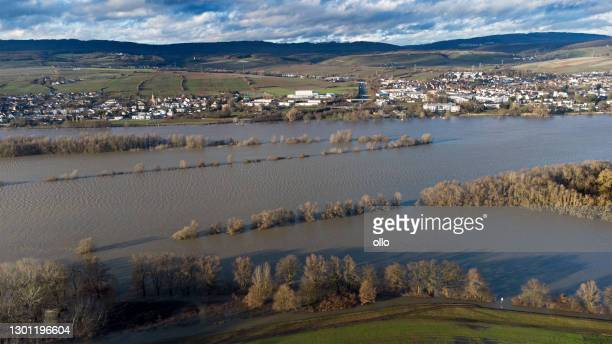 rhine river and flooded river banks - rheingau area, germany - germany stock pictures, royalty-free photos & images