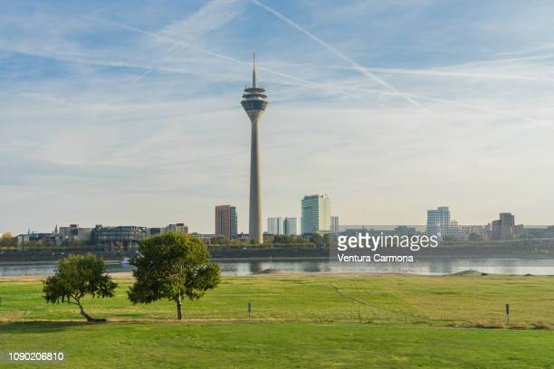 rhine tower in düsseldorf - düsseldorf stock-fotos und bilder