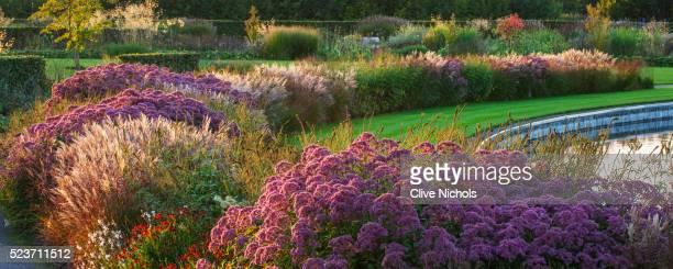Rhs Garden, Wisley: Borders by tom Stuart - Smith Near The Lake - September, Evening Light, Stipa, H