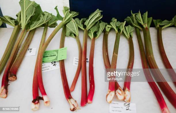Rhubarb is displayed in a horticulture tent during the Osmotherley Country Show on August 5, 2017 in Osmotherley, England. The annual show hosts...
