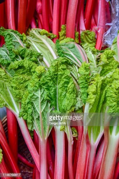 Rhubarb on sale at vegetables market