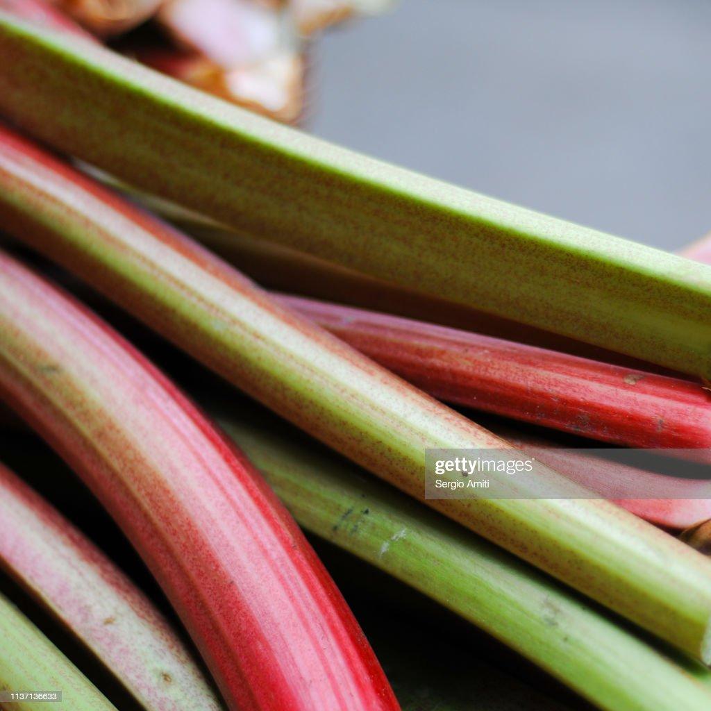 Rhubarb stems : Stock Photo
