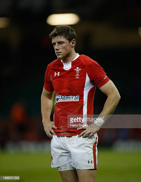 Rhys Priestland of Wales looks dejected after the international match between Wales and Samoa at the Millennium Stadium on November 16 2012 in...