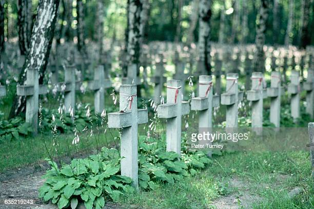 Ribbons in Poland's national colors trees and delicate white flowering plants decorate austere crosses in a war cemetery for the victims of the Katyn...