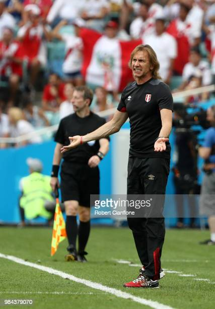Ricardo Gareca Head coach of Peru gives his team instructions during the 2018 FIFA World Cup Russia group C match between Australia and Peru at Fisht...