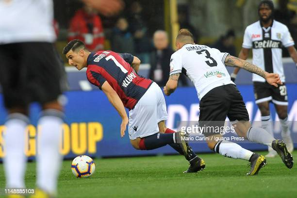 Riccardo Orsolini of Bologna FC in action during the Serie A match between Bologna FC and Parma Calcio at Stadio Renato Dall'Ara on May 13 2019 in...