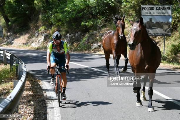 Riccardo Stacchiotti of Italy and Team Vini Zabu' KTM / Horses / Poggio Capanne Village / during the 55th Tirreno-Adriatico 2020, Stage 3 a 217km...