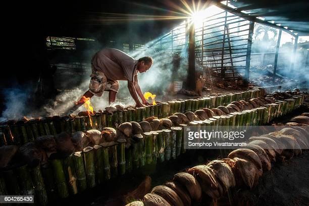 Rice bamboo
