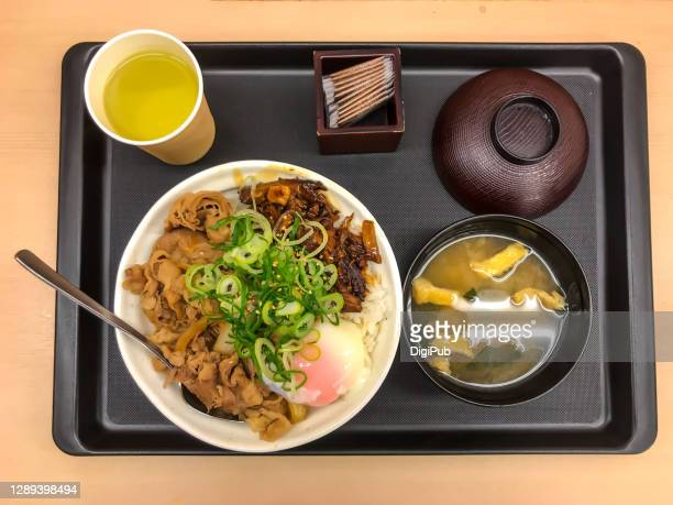 rice bowl with braised pork, simmered beef and soft boiled egg - aburaage stock pictures, royalty-free photos & images