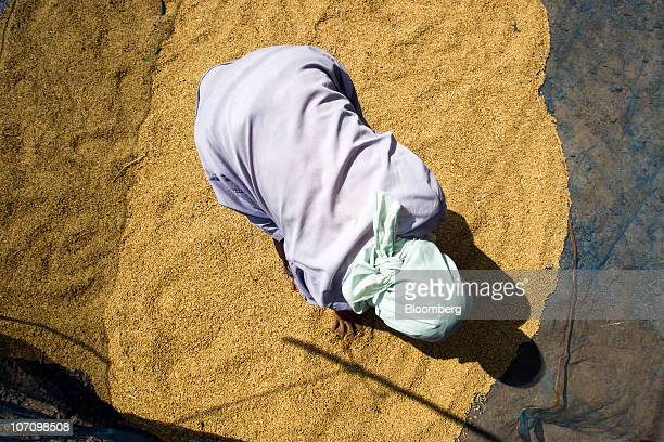 A rice farmer spreads rice out to dry at their home in Surin Thailand on Monday Nov 22 2010 Thailand the world's biggest rice exporter said output...