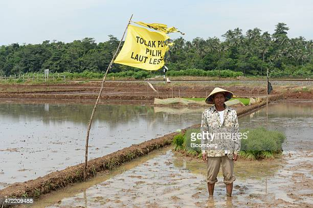 Rice farmer Wari who uses one name poses for a portrait next to a protest flag in his paddy field on the site of a planned coalfired power station in...