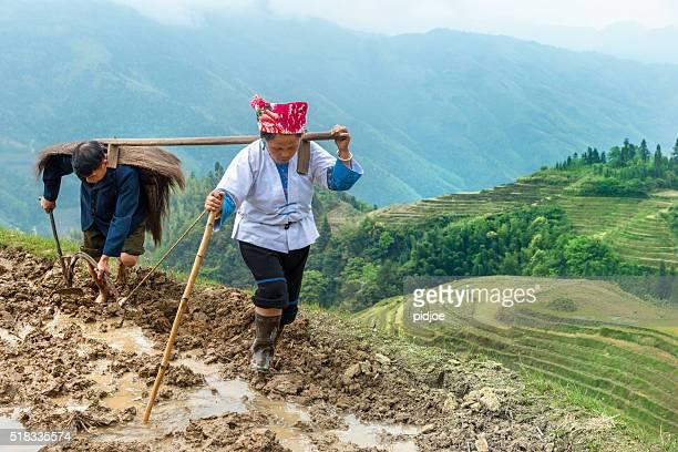 Reis Landwirte Pflügen von Hand