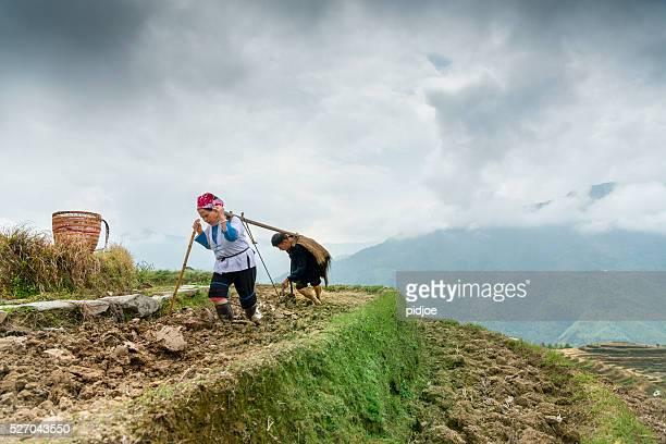 Reis Landwirte ploughing von hand unter Dramatischer Himmel