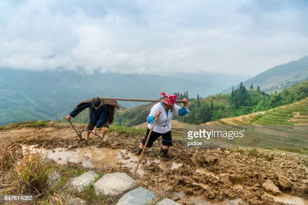 Rice farmers ploughing by hand under dramatic sky