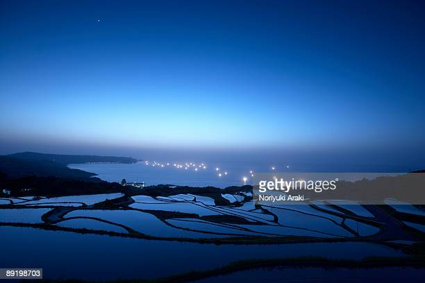 rice field and fishing fire - rice terrace stockfoto's en -beelden