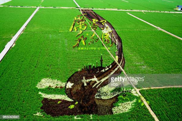 A 3D rice field painting featuring amazing China is on display at a paddy field at Sibe town on June 24 2018 in Shenyang Liaoning Province of China...