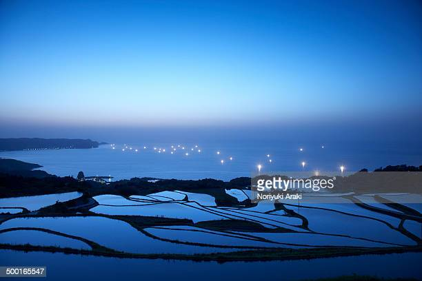 rice fields and fishing boats - 山口県 ストックフォトと画像