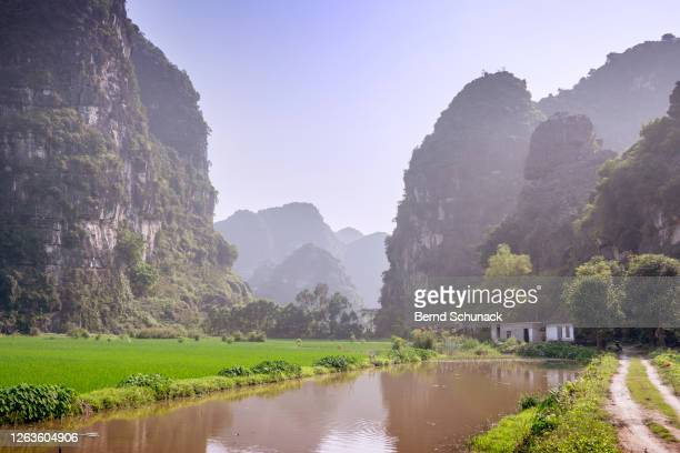 rice fields and karst rocks of ninh binh - bernd schunack stockfoto's en -beelden