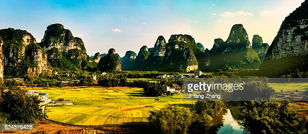 Rice fields in the scenic GuangXi mountain area
