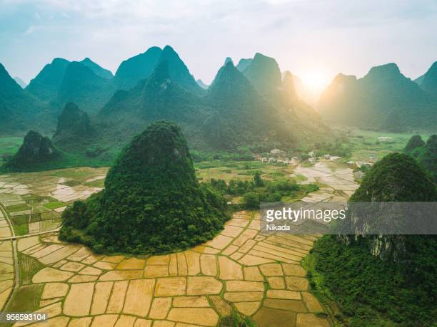 Rice fields scenery karst landscape of Guilin, China