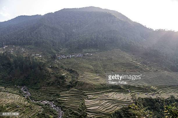 Rice fields stretch along the road which winds along the valley of the Ganges River one of the world's longest river in Western Himalayas The river...
