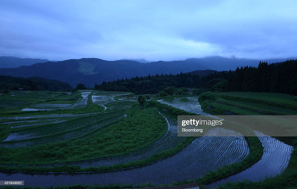 Ancient Silk Town Paves Way For Japans Abandoned Rice Fields : News Photo