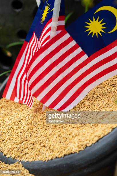 Rice is a food staple for Malaysia which is celebrate 61st of Independence Day in 2018.