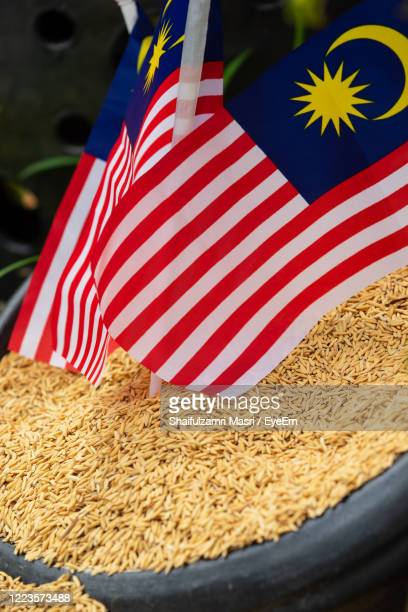 rice is a food staple for malaysia which is celebrate 61st of independence day in 2018. - shaifulzamri foto e immagini stock