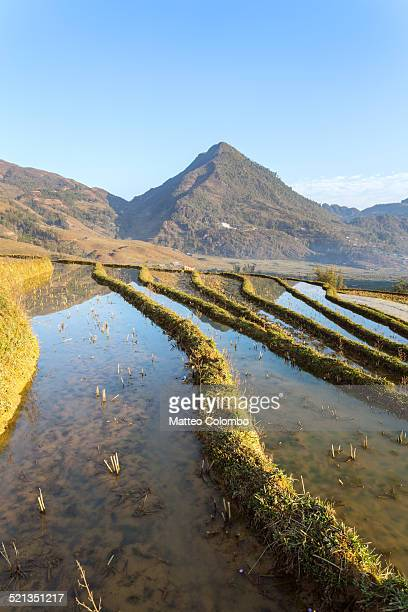 rice paddies in the mountains near sa pa - sa pa stock photos and pictures