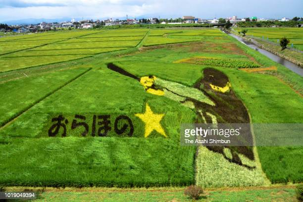 Rice paddy faeturing Shohei Ohtani of the Los Angeles Angels is seen on August 17 2018 in Oshu Iwate Japan