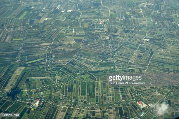 Rice paddy in Bangkok aerial view from airplane