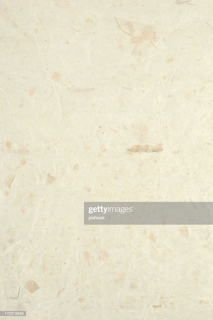 Rice Paper : Stock Photo