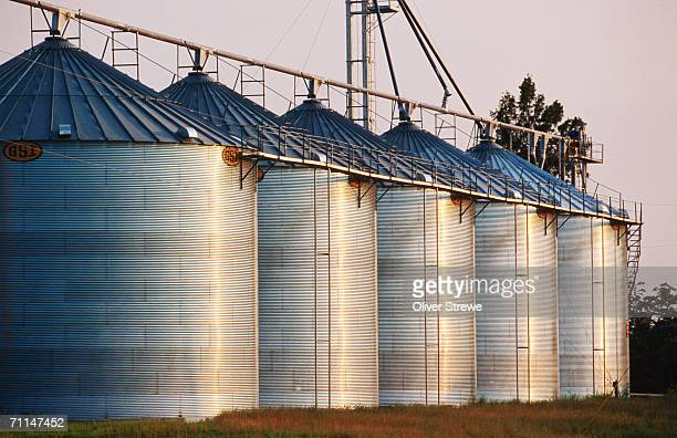 rice silos in the delta, united states of america - rice cereal plant stock pictures, royalty-free photos & images