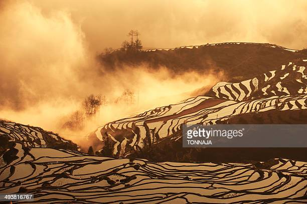 rice terrace in yuanyang county - yuanyang stock pictures, royalty-free photos & images
