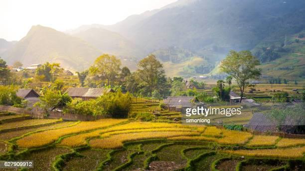 rice terraces at mu cang chai , vietnam - lugar histórico - fotografias e filmes do acervo