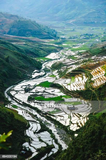 Rice terraces field in water season landscapes beautiful of Mu Cang Chai Yen Bai Vietnam.