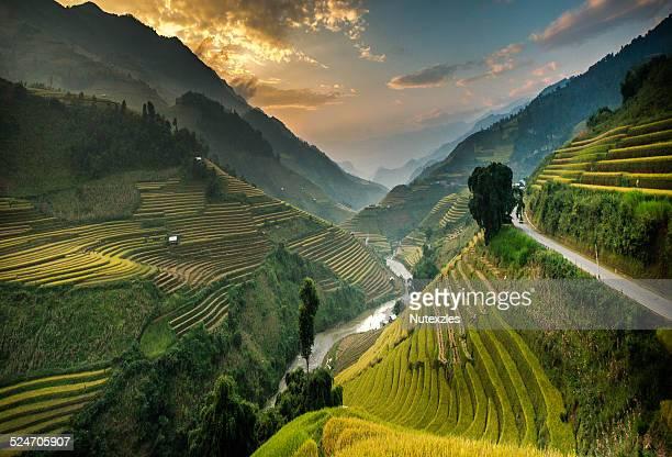 rice terraces in mu cang chai, north vietnam - paisajes de venezuela fotografías e imágenes de stock