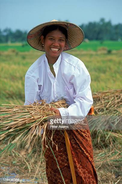 rice worker, bali, indonesia